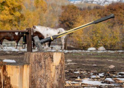 The Way It Was TV 2018 Colorado Elk Bucks Bulls 02