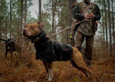 The Way It Was TV 2018 Louisiana Hogs Hoops Net Fishing 15
