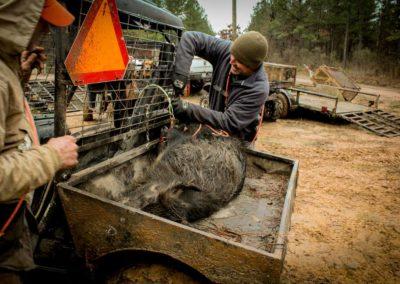 The Way It Was TV 2018 Louisiana Hogs Hoops Net Fishing 30